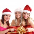 Christmas group portrait — Stock Photo #14978083