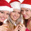 Christmas group portrait — Stock Photo #14978099