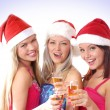 Christmas group portrait — Stock Photo #14978177