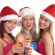 Christmas group portrait — Stock Photo #14978187