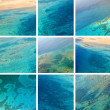 Red Sea collage — Foto Stock