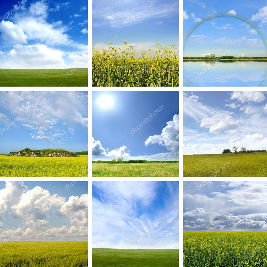 Collage made of nine different field images. Perfect for illustrating. — Stock Photo #15037951