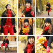 Colorful autumn collage - Stock Photo