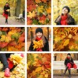 Royalty-Free Stock Photo: Colorful autumn collage