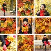 Colorful autumn collage — Stock Photo