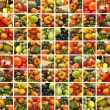 Collage made of many images of different fruits and vegetables — Stock Photo #15365251
