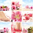Spa-Collage — Stockfoto #15365629