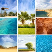 Nature of Egypt — Stock Photo