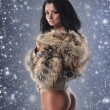 Stock Photo: Young sexy fit woman in nice lingerie over winter background