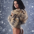 Young sexy fit woman in nice lingerie over winter background — Stock Photo