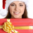 Royalty-Free Stock Photo: Attractive female Santa