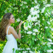 Young attractive girl smelling bird-cherry flowers — Stock Photo