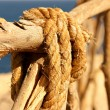 rope — Stock Photo #15401953