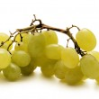 Grapes isolated on white — Stock Photo #15438669