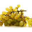 Grapes isolated on white — Stock Photo