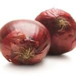 Onion isolated on white — Stock Photo