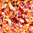 Bright fractal background made of many petals — Foto Stock