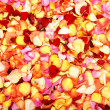 Bright spa background with a lot of different petals — Stock Photo