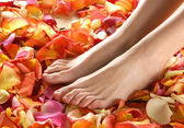 Spa composition of legs and petals — Stock Photo