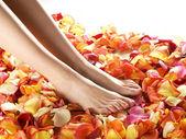 Spa samenstelling van benen en bloemblaadjes — Stockfoto