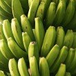Bananas - Stockfoto