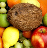 Fruits and coco — Stock Photo