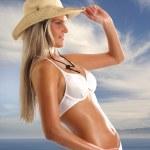 Sexy lady — Stock Photo #15825999