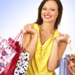Attractive woman doing shopping - Stock Photo