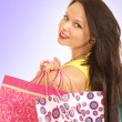 Attractive female shopper — Stock Photo #15877421