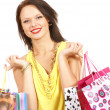 Attractive woman doing shopping - Stock fotografie