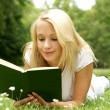 Young beautiful girl reading — Stock Photo #15878479