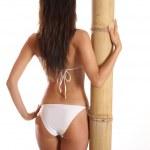 Sexy lady — Stock Photo #15884597