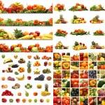 conjunto nutrição — Foto Stock