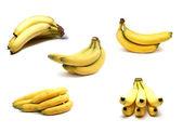 Bananas isolated on white — Stock Photo