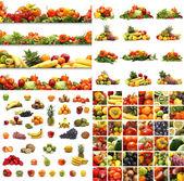 Conjunto de nutrición — Foto de Stock