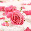 Stock Photo: Roses over towel