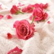 Roses over towel — 图库照片