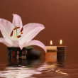 Japanese spa composition over dark background — Stock Photo