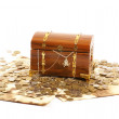 Treasure chest — Stock Photo #16169825