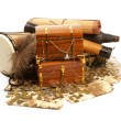 treasure chest — Stock Photo #16169829
