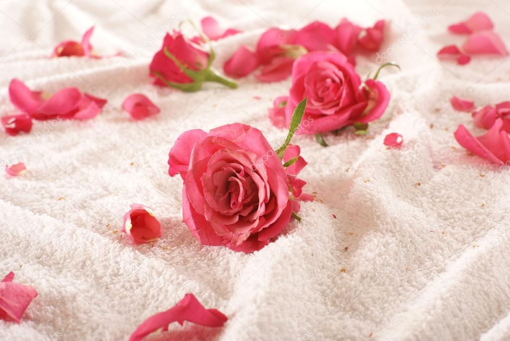Valentine's composition of roses over towel             — Stock Photo #16165329