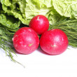 Radish and greens — Stock Photo