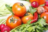 Tomate e salsa — Foto Stock