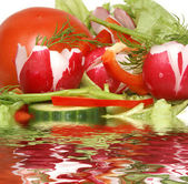 Vegetables and reflection in liquid — Stock Photo