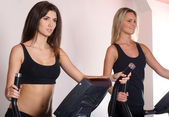 Fit sexy girls in the gym — Stock Photo