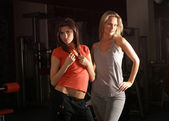 Fit sexy girls — Stock Photo