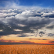 Stock Photo: Collage: meadow, sunset, sky, clouds, stratosphere and space in one image