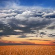 Collage: meadow, sunset, sky, clouds, stratosphere and space in one image - Stock Photo