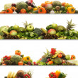 Set of different fresh tasty vegetables - Stock Photo