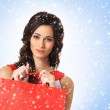 Young beautiful woman with the shopping bag — Stock Photo